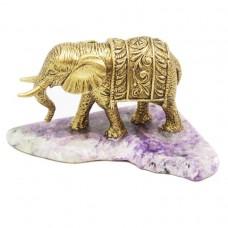 Слон Индийский на Чароите